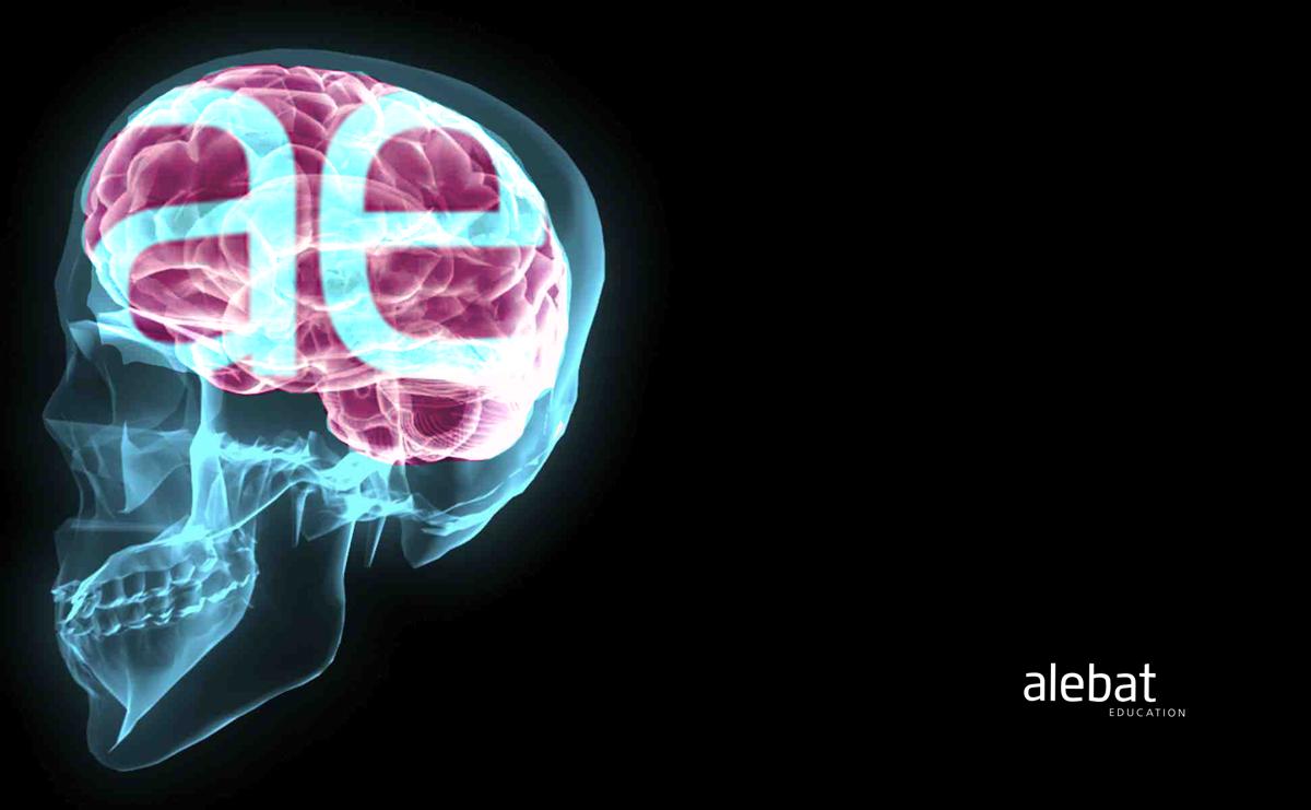 Fotografía que ilustra la noticia de salud de Alebat Education sobre Algunas afirmaciones falsas sobre el cerebro que debes saber