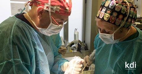 Fotografía que ilustra la noticia de odontología de Knotgroup Dental Institute sobre La Dra. Chantal Malevez visita la Clínica Guitián